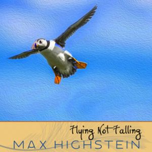 Flying Not Falling by Max Highstein